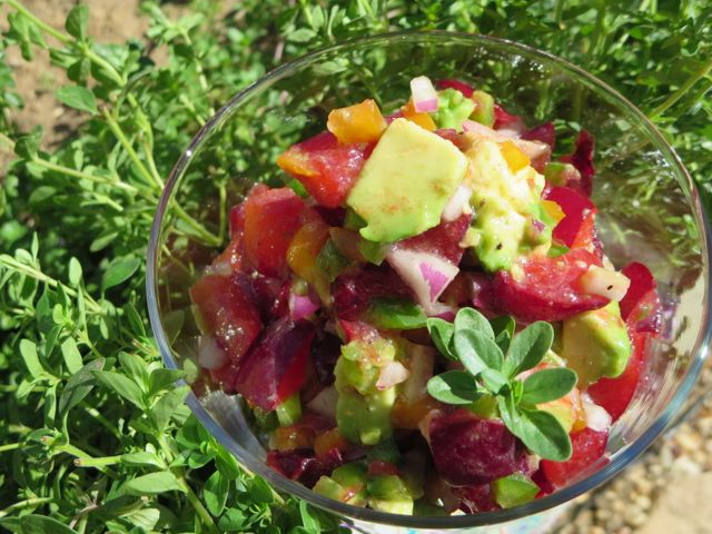 "stonefruit ""salsa"" is colorful and refreshing!"