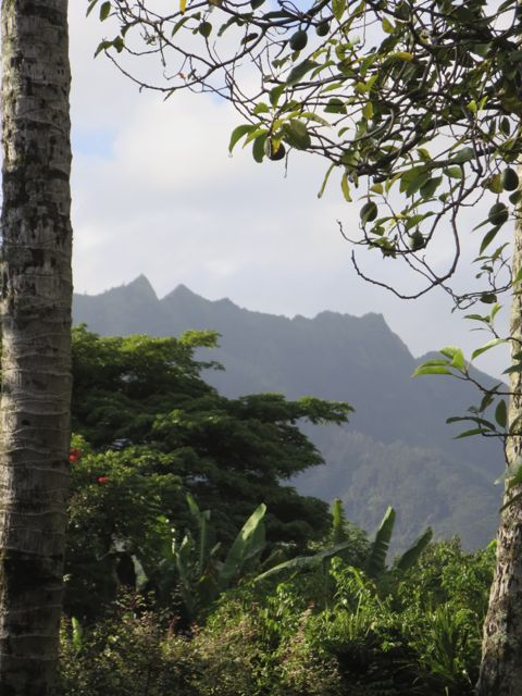 morning of the hike on the napali coast